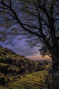 under pendle.... by Phil Darby