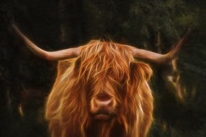 not quite so mystical coo.... Phil Darby